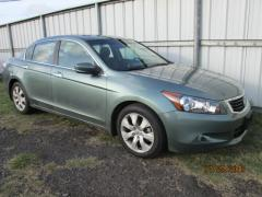 Honda Accord HONDA ACCORD EX
