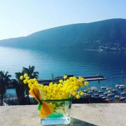 Montenegro. Great beaches, sea and sun. Suncani Skalini