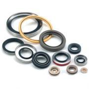 oil seal, seals for sealing mechanisms
