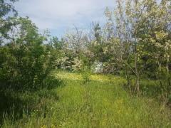 Selling a gorgeous plot of land with a house near the river southern bug